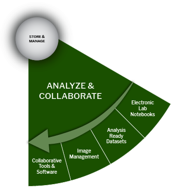 Analyze & Collaborate slice from biomedical data lifecycle wheel